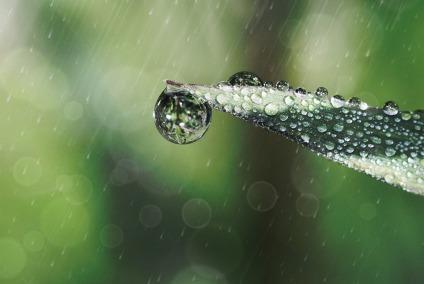 raindrop-642955_960_720